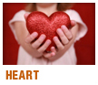 Heart Care Services