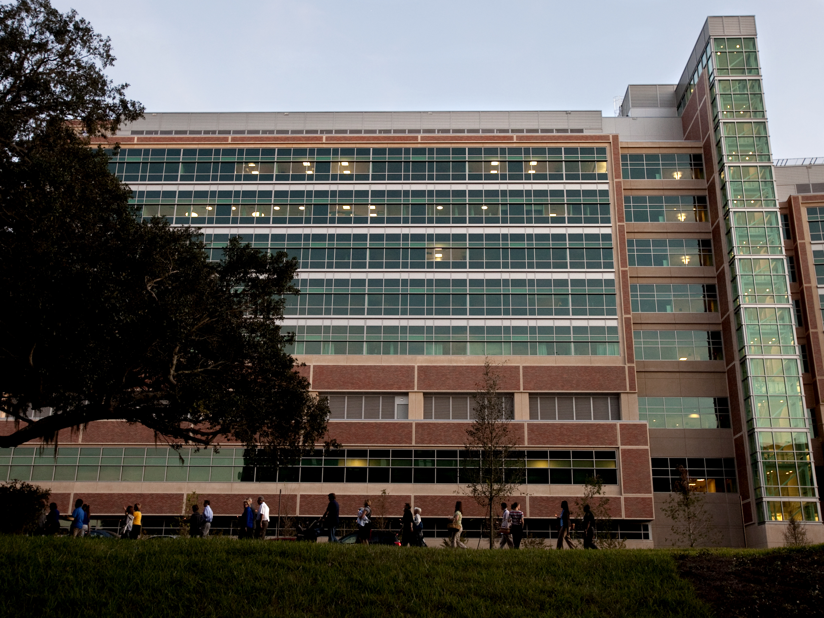 Shands at UF best in state in U S  News rankings | UF Health