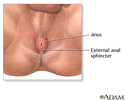 Male medical picture anus