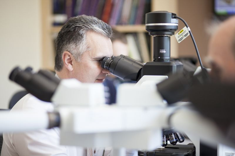 UF Health Dermatology doctor looking into a microscope.