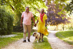 A woman in a yellow dress is laughing and holding the hand od a man wearing a pink shirt. Their dog is walking with the, down a road surrounded by trees.