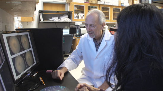William W. Hauswirth, Ph.D., is a professor in the UF College of Medicine's department of ophthalmology research.