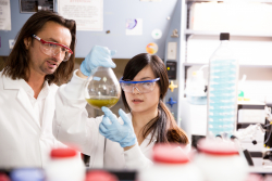 Hendrik Luesch, Ph.D., and Weijing Cai, Ph.D., from  the UF College of Pharmacy, led the development and testing of Apra S10, a  novel drug discovery to treat pancreatic cancer.