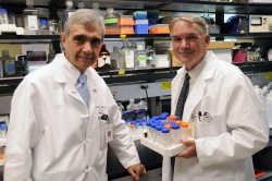 Arshag D. Mooradian, M.D., and Michael J. Haas, Ph.D.