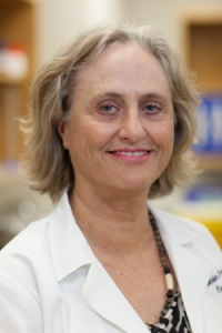 Martha Campbell-Thompson, D.V.M., Ph.D., a professor in the UF College of Medicine department of pathology, immunology and laboratory medicine.