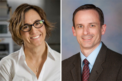 (From left) Nicole Calakos, M.D., Ph.D., and David Vaillancourt, Ph.D., are authors of the study.