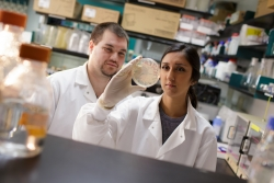 Brian Mahon and Avni Bhatt, graduate research assistants in the department of biochemistry and molecular biology, inspect a bacterium that is used to produce carbonic anhydrase. The carbonic anhydrase can potentially be used to neutralize the carbon dioxide produced by industry and power plants, their research found.