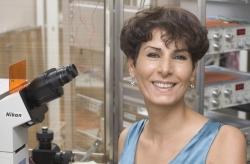 Habibeh Khoshbouei in the lab