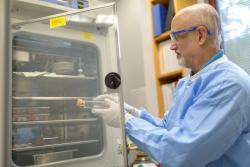 UF Health virologist John Lednicky working in his lab before the coronavirus pandemic. (Photo by Jesse S. Jones)