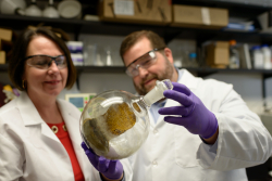 Bonnie Avery, Ph.D., a clinical professor of pharmaceutics, and Chris McCurdy, Ph.D., a professor of medicinal chemistry, hold up a flask of kratom, or Mitragyna speciosa, in a laboratory at the University of Florida. Researchers at the UF College of Pharmacy research kratom's potential to wean addicts off opioids.