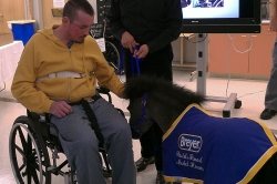 Charlie LaFever pets Magic, one of the Gentle Carousel Miniature Therapy Horses that often visit UF Health Shands Rehab Hospital. The visit was special for LaFever because his family once owned a miniature horse farm of their own when he was a middle school student.