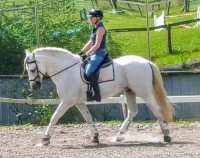Martina, above, horseback rides only three weeks after her laparoscopic hysterectomy, under regional epidural.