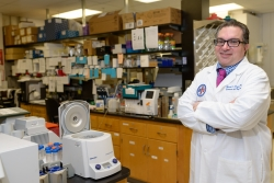 Mark S. Segal, M.D., Ph.D., the chief of the division of nephrology, hypertension and renal transplantation in the UF College of Medicine's department of medicine, is the principal investigator of the research conducted at the UF Health.