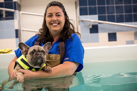 Veterinary technician Wendy Davies is shown with a dog receiving hydrotherapy in the UF Small Animal Hospital. The UF Veterinary Hospitals experienced an 11 percent increase in caseload in 2015, along with 5 percent net revenue growth.  (Photo by Nick Burchell)