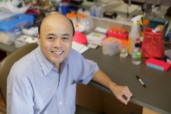 Chang-Qing Xia, M.D., Ph.D., is a research assistant professor in the UF College of Medicine's department of pathology, immunology and laboratory medicine.