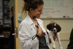 University of Florida veterinary student Heather Jimenez holds a patient in the Primary Care area of the UF Small Animal Hospital on May 4. (Photo by Sarah Carey)