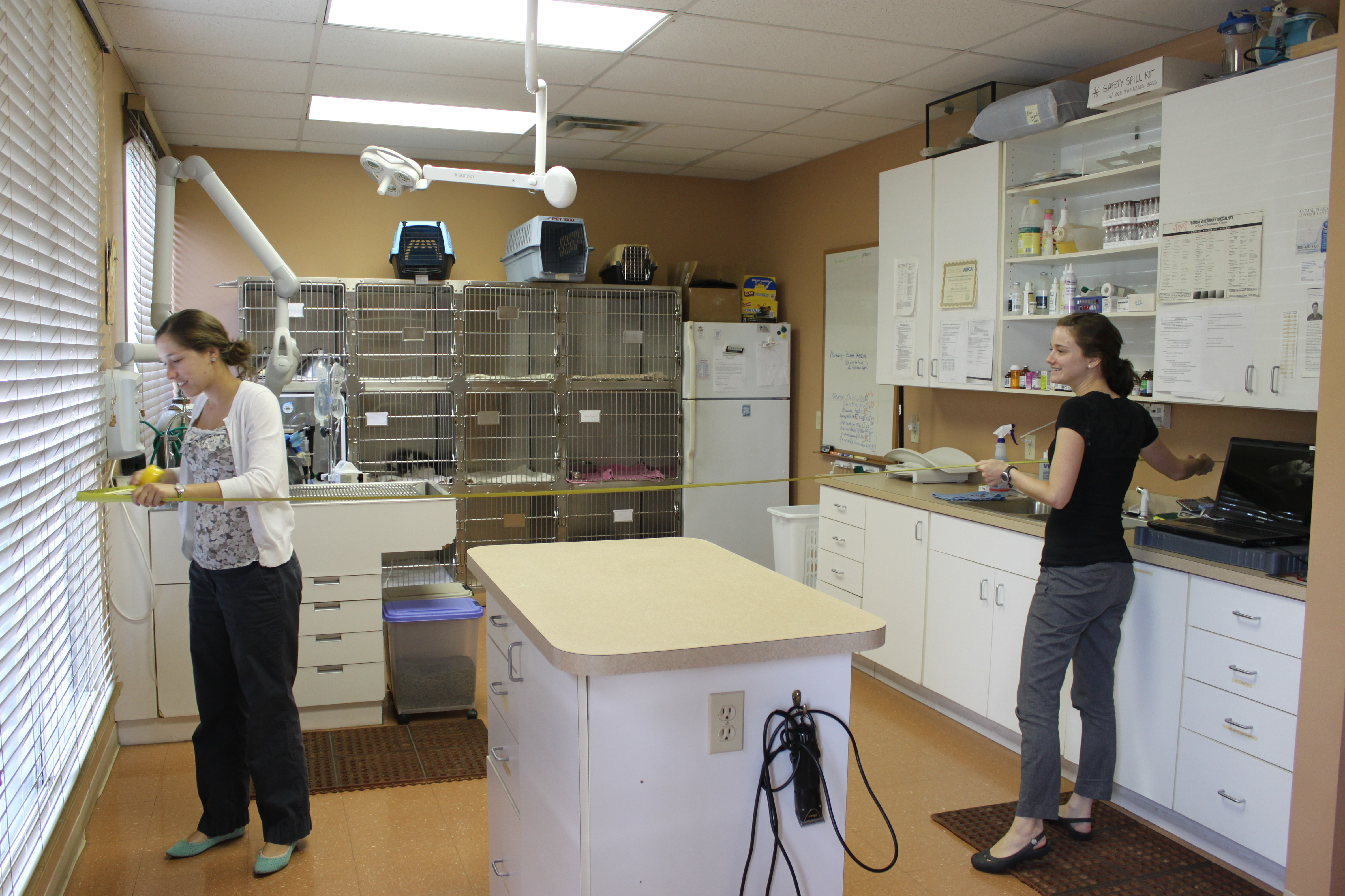 University Of Florida Veterinary Students Dani Marks And Allison Vansickle Measure The Treatment Room In A