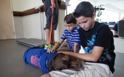 Jacob Schmitt, 13, pets his dog Cali, 3, a chocolate lab mix who spent two weeks at the University of Florida's Small Animal Hospital. She was bitten by a diamond back rattle snake. (Maria Farias/ Univeristy of Florida)