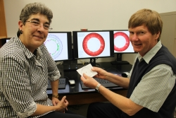 Anthony Barbet, Ph.D., right, holds a preserved tick against a background of computer-displayed genomic information from anaplasmosis strains he and Basima Al-Khedery, Ph.D., left, are studying. Anaplasmosis is a tick-borne disease that affects humans and animals. (Photo by Sarah Carey)