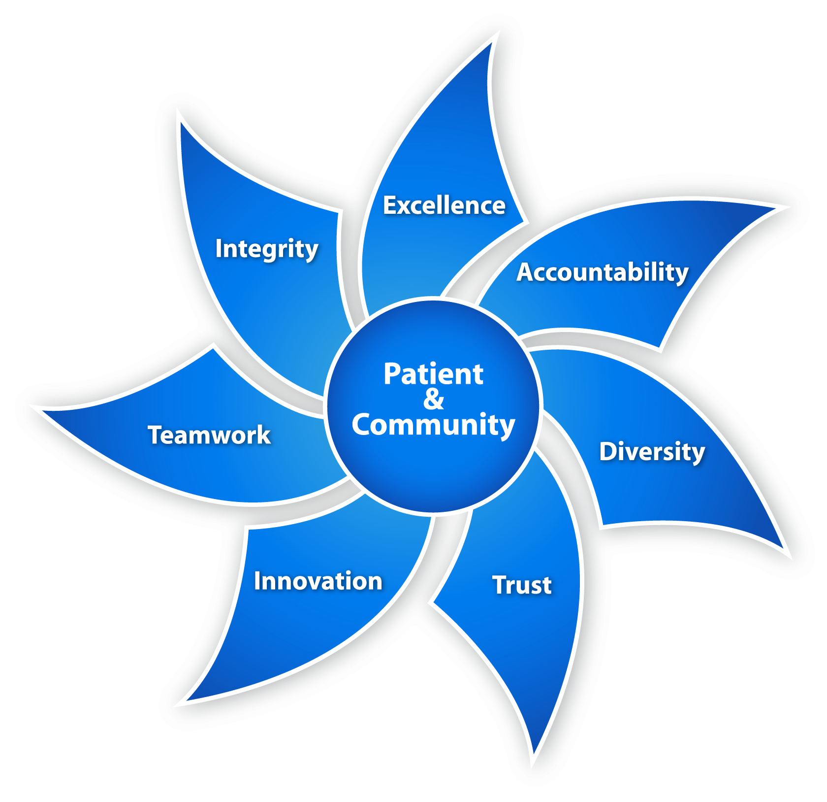 UF Health Values Flywheel