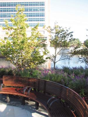 shands garden of hope - Uf Butterfly Garden