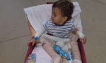 A photo of Kash Hill in an infant's wheeled device
