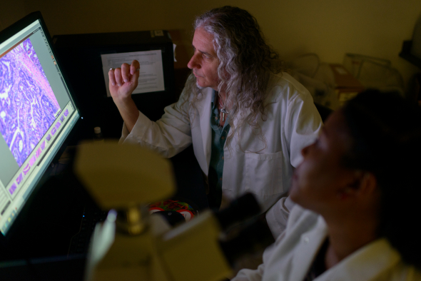 UF Researcher Jobin examines results on a screen