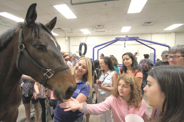 UF veterinary college's annual open house is April 15