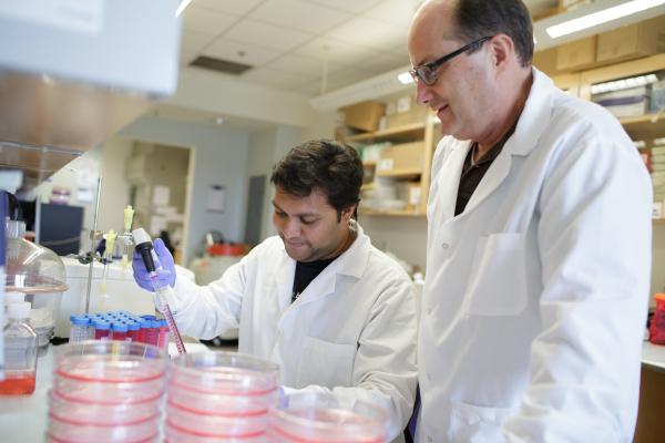 UF Health researcher investigates natural treatment for liver cancer