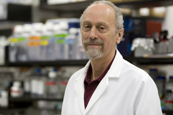 Gene therapy researcher receives highest honor from the Foundation Fighting Blindness