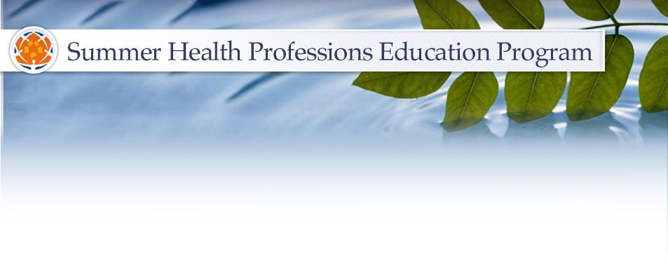Uf Summer 2020.Summer Health Professions Education Program Shpep Uf